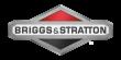 Briggs &Stratton